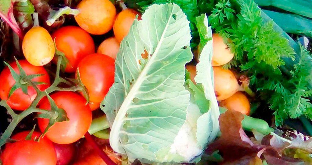 Nerja shopping - Ecological fruit and vegetable baskets